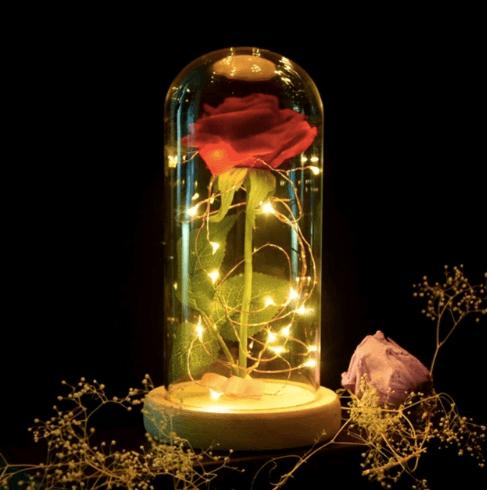 Красная роза из сказки «Красавица и чудовище»