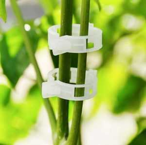 Пряжки для фиксирования растений